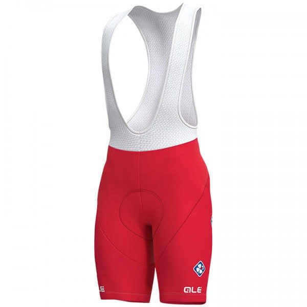 2019 GROUPAMA-FDJ Swiss Champion Bib Short - Professional Cycling Team